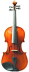 westbury violin front no case